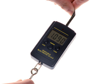 Digital Handy Scales 40kg*10g Mini Handing Electronic Digital Balance Portable Weight Scale LCD Display